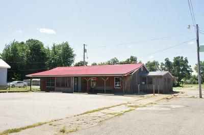 Massac County Commercial For Sale: 1100 E 5th Street