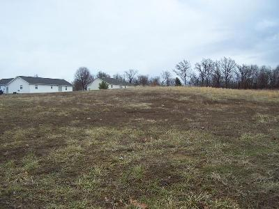 Johnston City Residential Lots & Land For Sale: 1207 Opel Lane