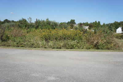 Metropolis Residential Lots & Land For Sale: Holly Lane