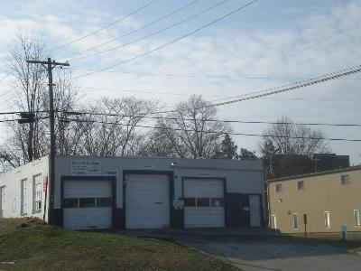 Carbondale Commercial For Sale: 1321 W Main