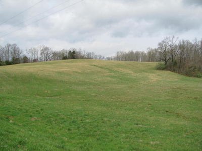 Alto Pass Residential Lots & Land For Sale: Pomona Road