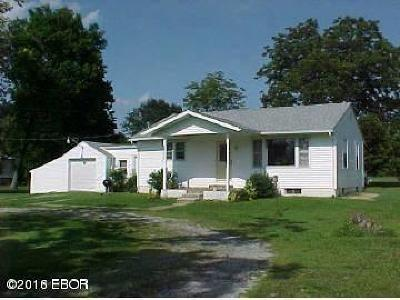 Johnston City Single Family Home For Sale: 16830 N Rt 37