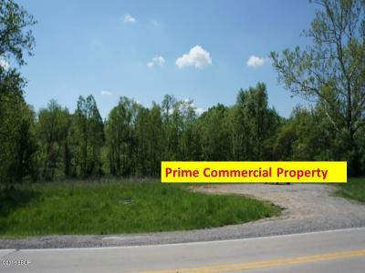 Carbondale Residential Lots & Land For Sale: Route 51 South
