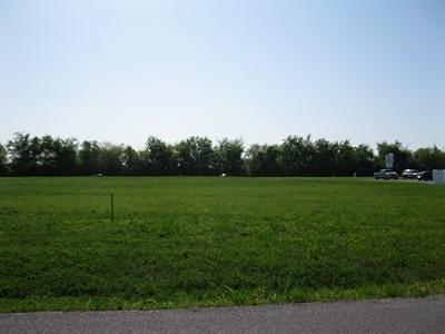 Residential Lots & Land For Sale: Rich View Lane