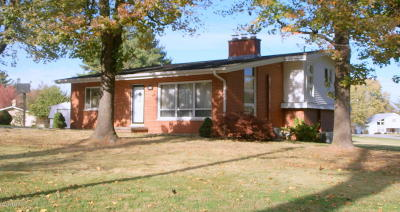 Herrin Single Family Home For Sale: 224 Kane Drive