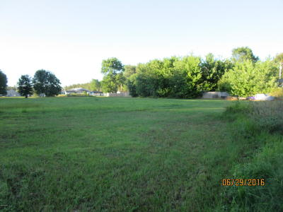 Massac County Residential Lots & Land For Sale: 33 Barger Drive