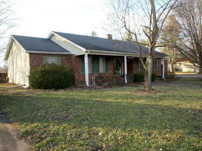 Herrin Single Family Home For Sale: 17297 Freeman Spur