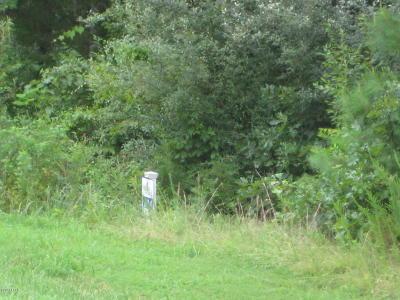 Goreville Residential Lots & Land For Sale: Parrish Ridge L244 Lane