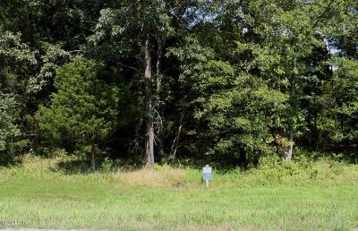 Goreville Residential Lots & Land For Sale: 3120&3160 Parrish Ridge Lane