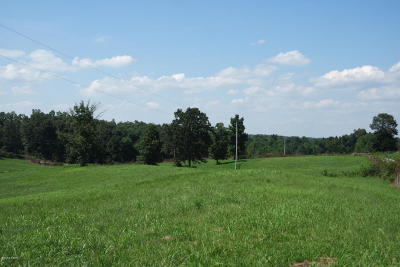 Massac County Residential Lots & Land For Sale: Marion Rd.