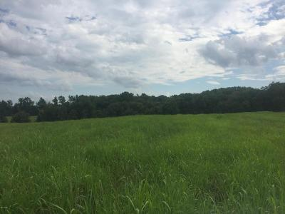 Cobden Residential Lots & Land For Sale: 0000tbd Winstead Road