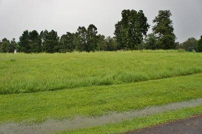 Metropolis Residential Lots & Land For Sale: Lot 7 Old Hickory Blvd