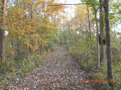Creal Springs Residential Lots & Land For Sale: 16930 Canaville Road