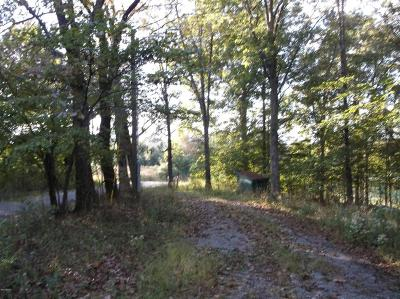 Hardin County Residential Lots & Land For Sale: S Iron Furnace Road