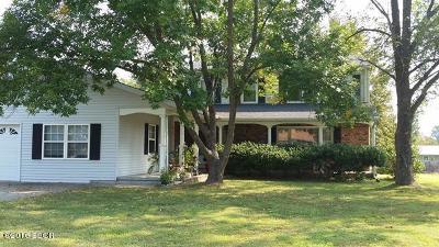 Carterville Single Family Home For Sale: 204 Lynne Lane