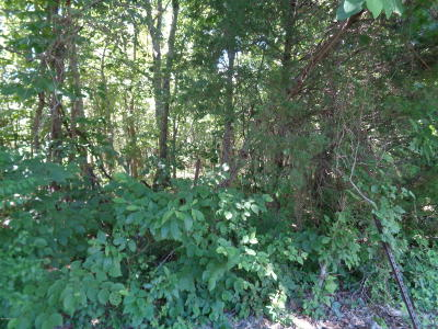 Hardin County Residential Lots & Land For Sale: McGan Road