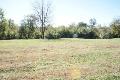 Murphysboro Residential Lots & Land For Sale: 1501 Shoemaker Drive