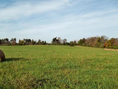 West Frankfort Residential Lots & Land For Sale: 11692 Southpoint Lane