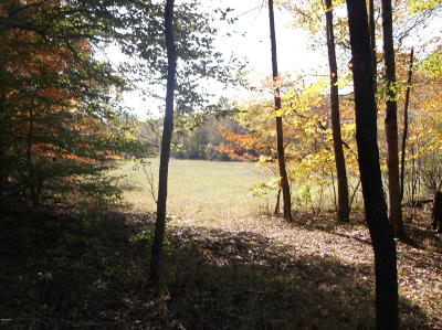 Hardin County Residential Lots & Land For Sale: Rr 1 Box 169a S Iron Furnace Rd