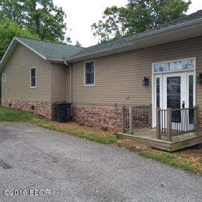 Cobden Single Family Home For Sale: 725 Skyline Drive