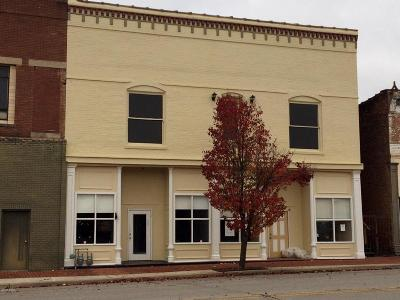 Massac County Commercial For Sale: 307-309 Ferry Street