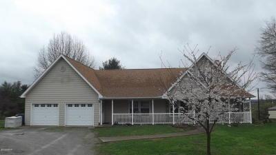 Cobden Single Family Home For Sale: 104 Bainbridge Street