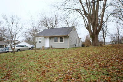 Goreville Single Family Home For Sale: 309 W Collins
