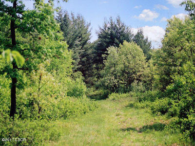Goreville Residential Lots & Land For Sale: 1493 Hilltop Circle