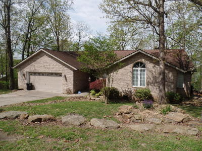 Creal Springs Single Family Home For Sale: 1000 Lakeview Drive