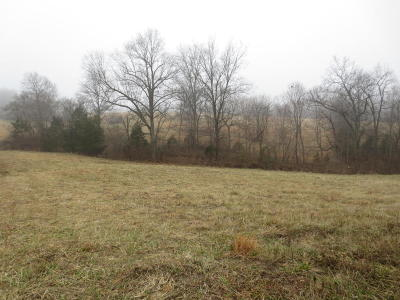 Residential Lots & Land For Sale: N Rt. 37