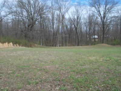 Murphysboro Residential Lots & Land For Sale: Lot 3 Morgan Dr.