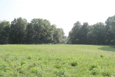 Simpson IL Residential Lots & Land For Sale: $339,000
