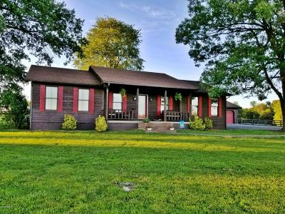 Massac County Single Family Home For Sale: 5653 S Us Hwy 45