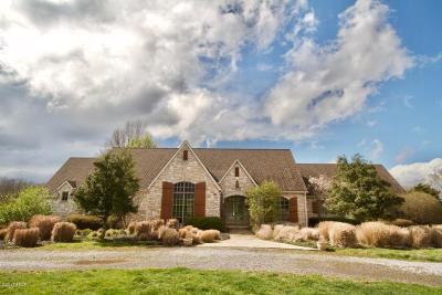 Goreville Single Family Home For Sale: 275 Newton Lane