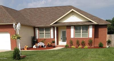 Herrin Single Family Home For Sale: 15473 Karigan Lane