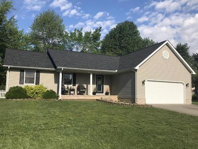 Massac County Single Family Home For Sale: 2207 Hillcrest Avenue