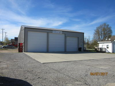 Massac County Commercial For Sale: 401 W 10th Street