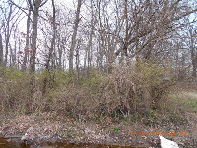 Residential Lots & Land For Sale: N Indiana Street