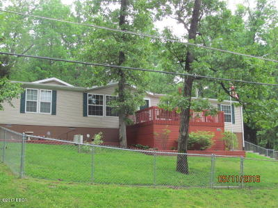Goreville Single Family Home For Sale: 750 N Lakeshore Drive