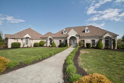 Murphysboro Single Family Home Active Contingent: 3700 Ariel Drive