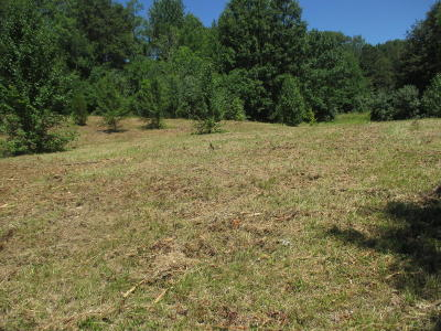 Residential Lots & Land For Sale: 1 Morgan Drive
