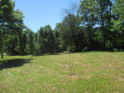 Residential Lots & Land For Sale: 7 Morgan Drive
