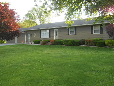 Johnston City Single Family Home For Sale: 16806 Route 37