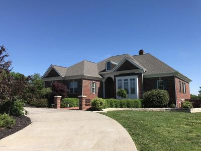 Johnson County Single Family Home Active Contingent: 8375 Us Highway 45