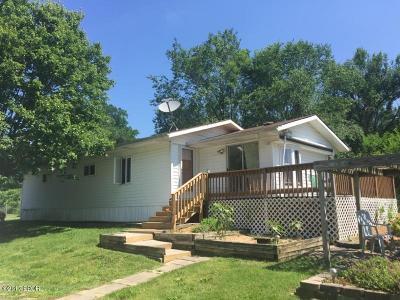 Cobden Single Family Home For Sale: 517 N Appleknocker Drive