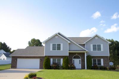 Carbondale Single Family Home For Sale: 2990 Alveria