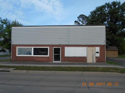 Commercial For Sale: 200 S Granger Street