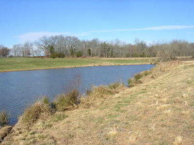Vienna Residential Lots & Land For Sale: 0001 E St Hwy 146