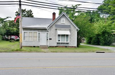 Massac County Single Family Home For Sale: 709 Ferry Street