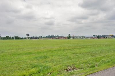 Metropolis Residential Lots & Land For Sale: Hwy 45 & Woodhaven